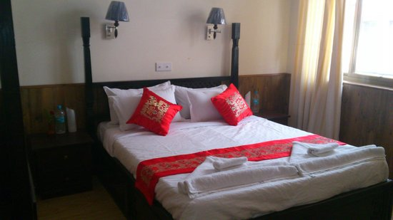 Dream Nepal Hotel and Apartment: Room