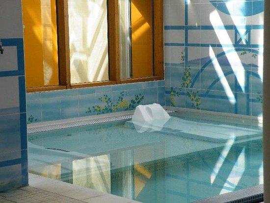 Hôtel-Club Odalys Les Albères : Spa