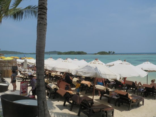 Dara Samui Beach Resort: ビーチ 狭いけど一応充分と言える