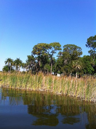 Captain Fred's Airboat Nature Tours: Beautiful scenery