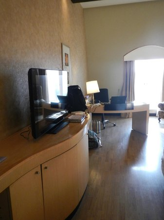 Hotel Royal Orchid: Desk and television.  The MINI fridge was in a cabinet, and worked better when the door was open