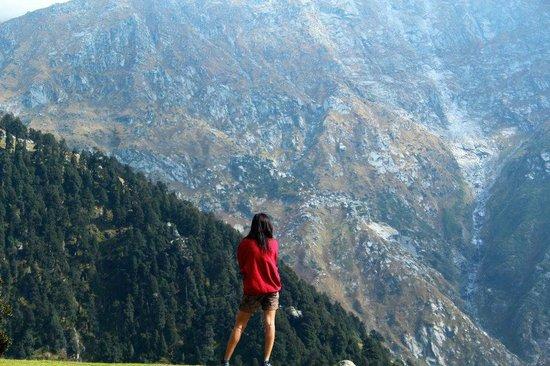 Triund Hill: the dhauladhar