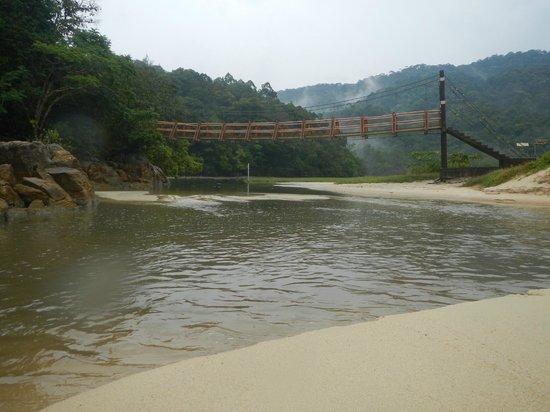 Penang National Park (Taman Negara Pulau Pinang): suspended bridge