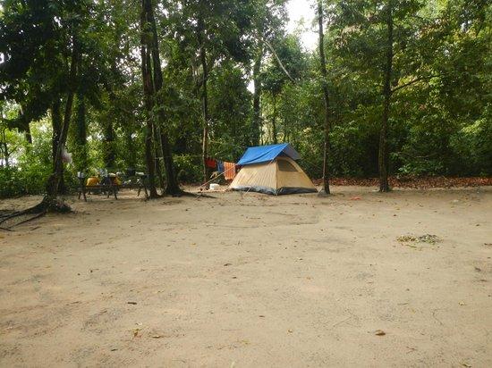 Penang National Park (Taman Negara Pulau Pinang): campsite