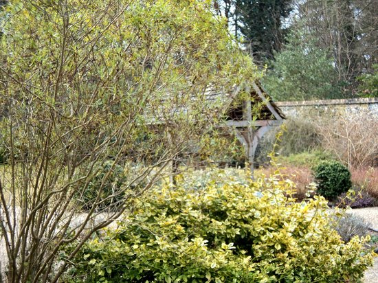 Brandon Country Park: Wishing Well in Walled Garden