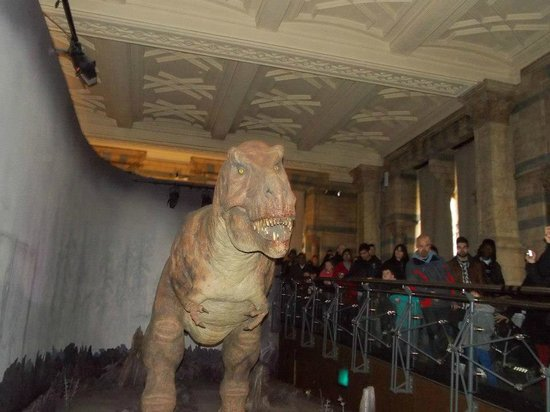 the robotic dinosaur - Picture of Natural History Museum ...