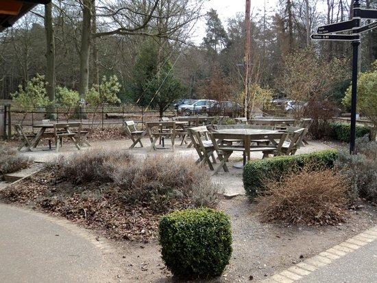 Brandon Country Park: Outdoor Seating near Park Centre