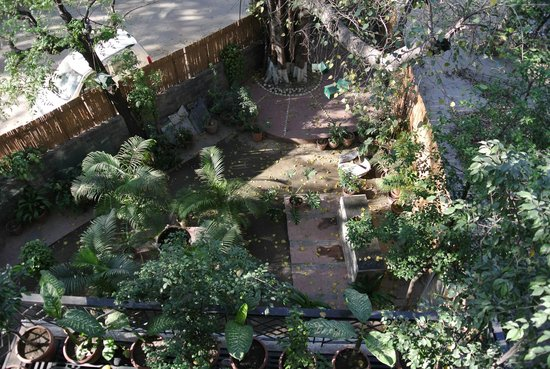 Saubhag Bed and Breakfast: Meera's Courtyard garden - a haven after being out & about