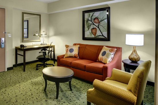 Hilton Garden Inn Pittsburgh/Cranberry: Studio Suite Living Area