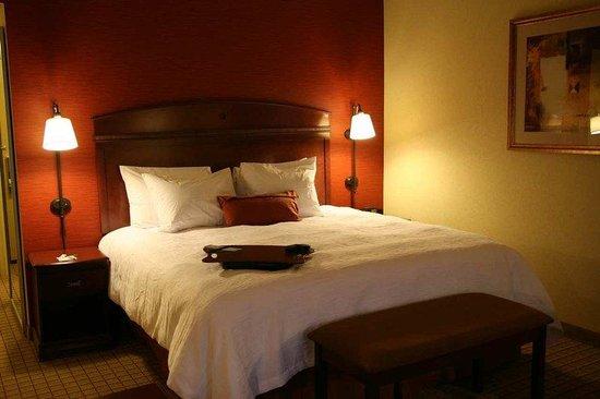 Hampton Inn and Suites Peoria at Grand Prairie: Standard King Room