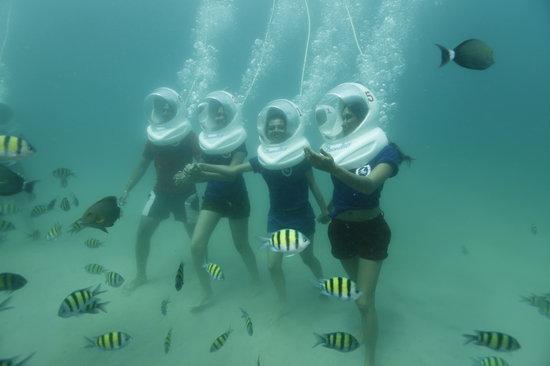 Sea Link Adventures Andaman Andaman And Nicobar Islands