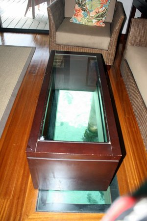 Hilton Moorea Lagoon Resort & Spa: the glass table top looking down to the ocean