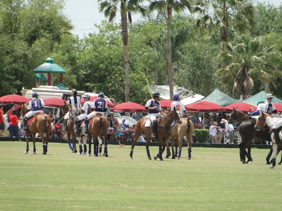 ‪Sarasota Polo at Lakewood Ranch‬