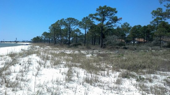 "Oak Grove Park Campground: the ""crowds"" over spring break--cabins on the beach"
