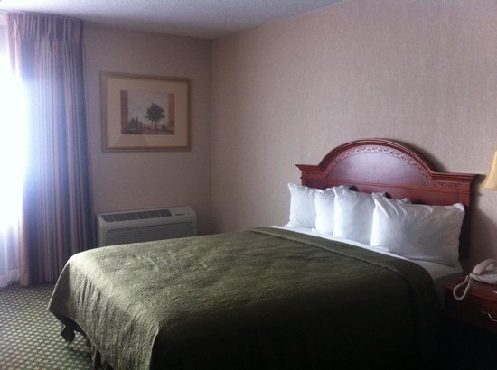Quality Inn Rochester Airport: Bedroom (one of the comfy double queen beds they have in a room!)