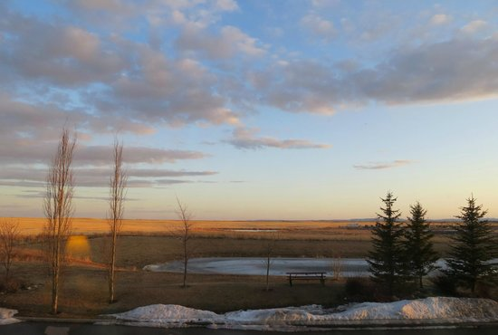 Super 8 High River AB : Early morning view from our window