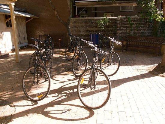 Bonza Bike Tours: Trusty steeds await
