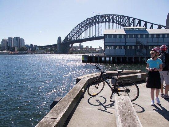 Bonza Bike Tours: En route