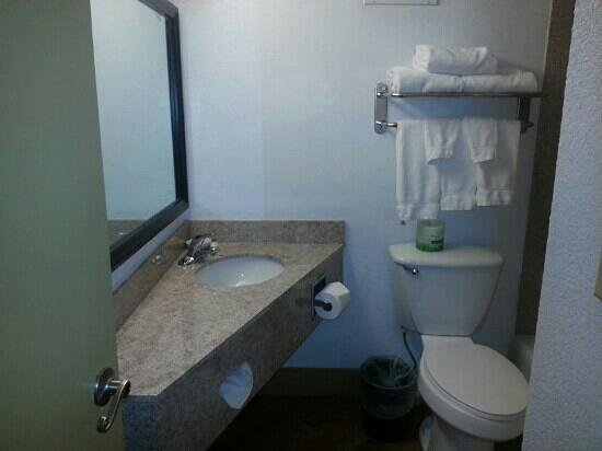 La Quinta Inn & Suites Indianapolis South: Bathroom