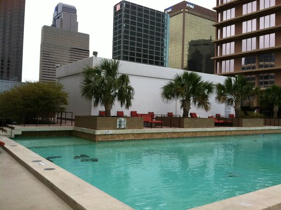 The Fairmont Dallas: Pool