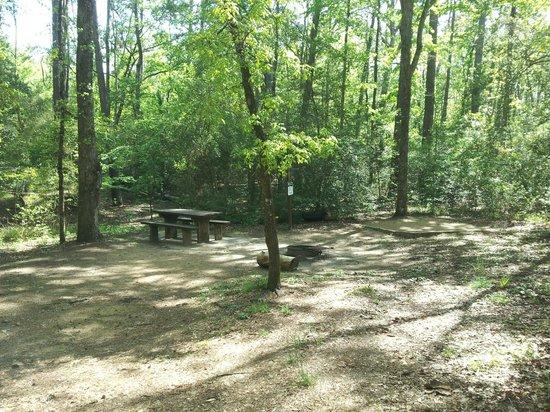 Double Lake Campground: Double Lake Primative Campsite