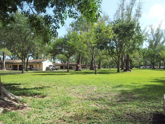 Tropical Park: Partial view at park between shelter 4 and 5