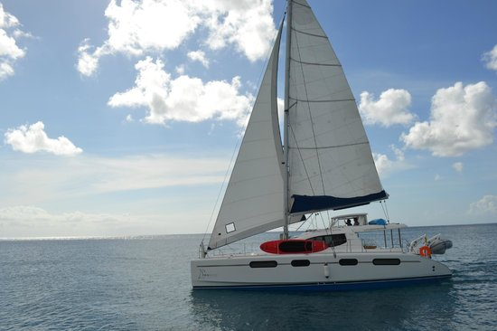 Сансет-Крест, Барбадос: Seaduced Luxury Catamaran sailing off of Port St Charles