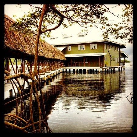 Laguna Azul Eco Lodge: Laguna Azul. Find a hammock and relax.