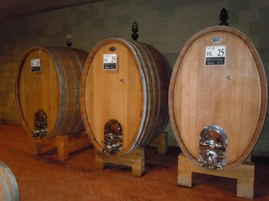 Tuscan Wine Tours by Grape Tours: Casks