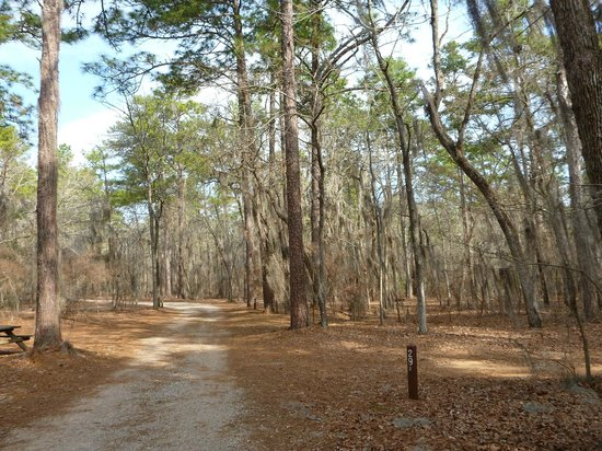 Wedgefield, SC: The tent loop