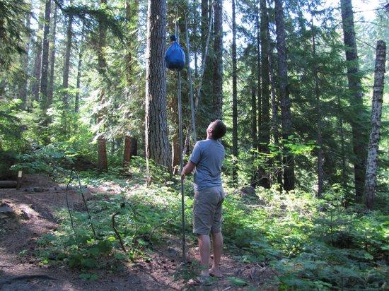 Wonderland Trail : Hanging food on bear pole
