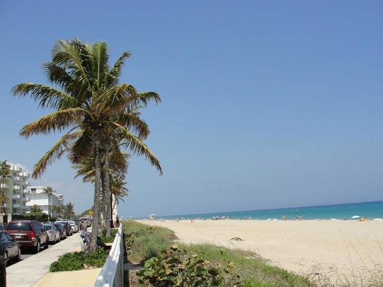 Charley S Crab Palm Beach Fl Menu