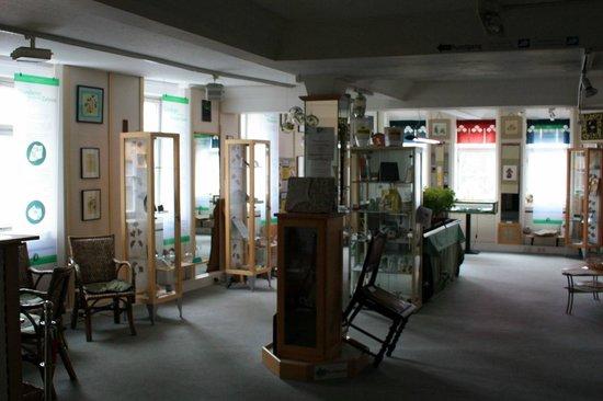 Ginkgo Museum