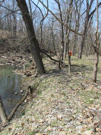 Rock Bridge Memorial State Park: Lower portion of Deer Run Trail along the creek