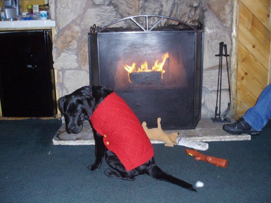 Big Bear Frontier Cabins: Aspen staying warm near the fire place