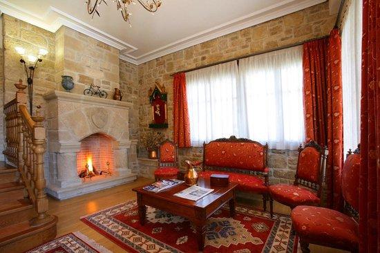 Hotel El Juglar: Salon con chimenea
