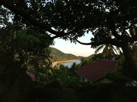 la Cigale: View from the villa