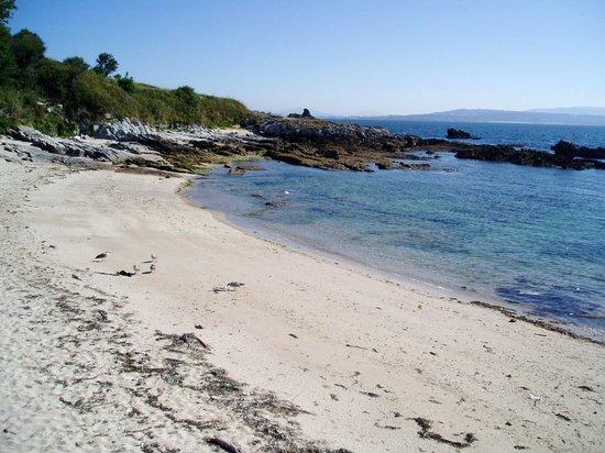 Playas de la Isla de Ons: Playa de Area dos Cans
