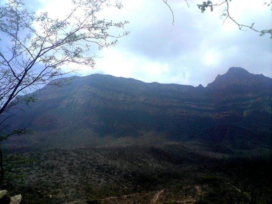 Chaparri Reserve : chaparri