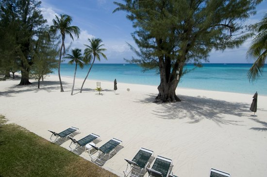 Casa Caribe: Grab a chair and enjoy the shade from the trees or your private umbrella.