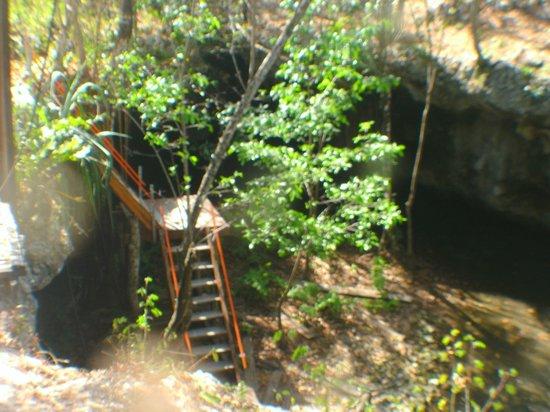 "Essential Scuba Training: The steps down to the Cenote ""Dreamsgate"""