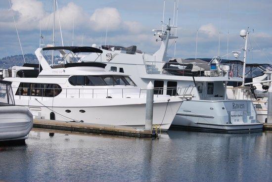 Best Western Plus Edmonds Harbor Inn : At the marina
