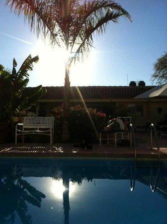 La Paloma Bed and Breakfast: Garden