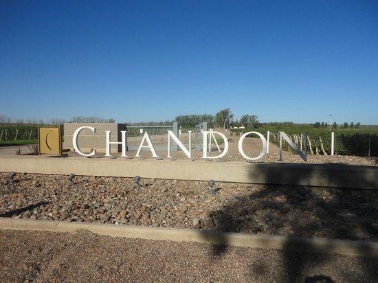 Bodegas Chandon: Entrada da Bodega