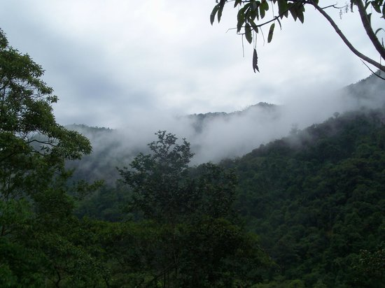 Copalinga: View from cabin porch