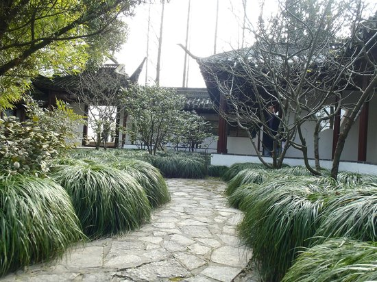 Holiday Inn Shanghai Songjiang: Cultural and natural park next to the hotel