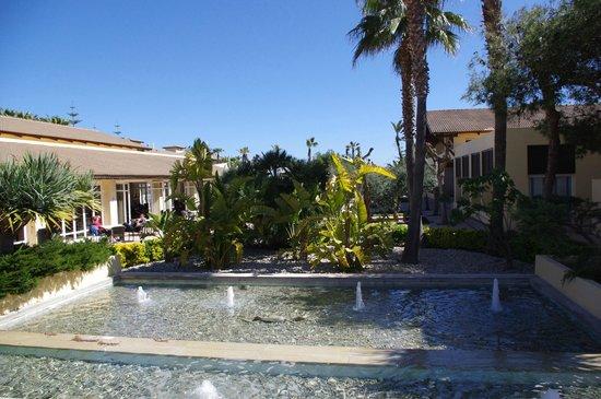 Eden Playa: Hotelgelände