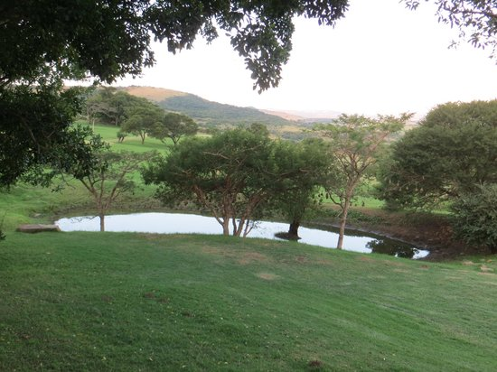 Rorke's Drift Lodge: view of grounds from room balcony