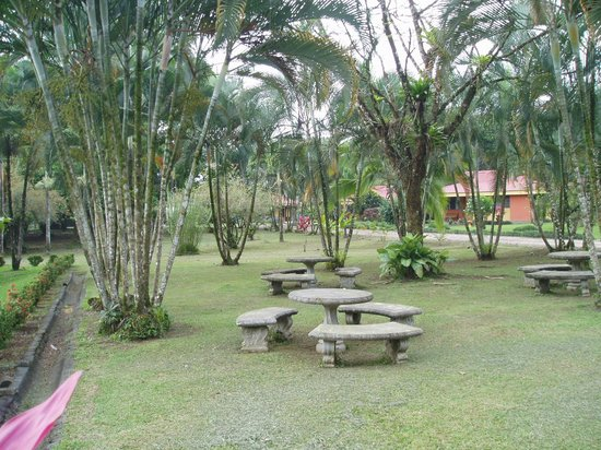 Arenal Country Inn: Picnic area