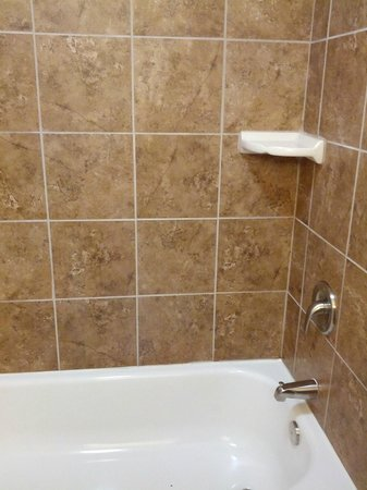 Holiday Inn Express Hotel & Suites Lafayette East: Shower